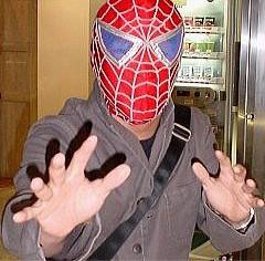 spiderdesi1